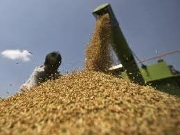 n2 América Latina pode alimentar o mundo