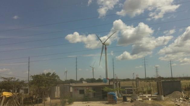 eolicas Parques eólicos mexicanos violariam normas da OCDE