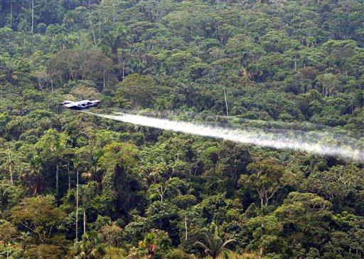 A fumigação de cultivos ilícitos com glifosato prejudicou o ambiente da selva colombiana. Foto: Domínio público