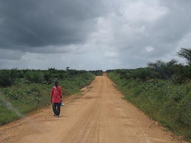 O território de Boegbor, um povoado no condado de Grand Bassa, na Libéria, foi entregue à empresa Equatorial Palm Oil por meio de uma concessão de 50 anos. Foto: Wade C. L. Williams/IPS