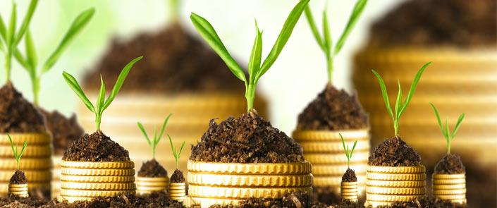 Fórum debate inovação em investimentos na bioeconomia da Amazônia