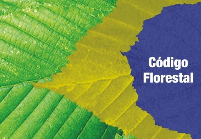 Grandes propriedades respondem por 59% da desobediência ao Código Florestal